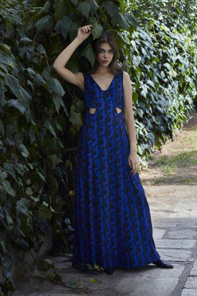 Dryope maxi dress