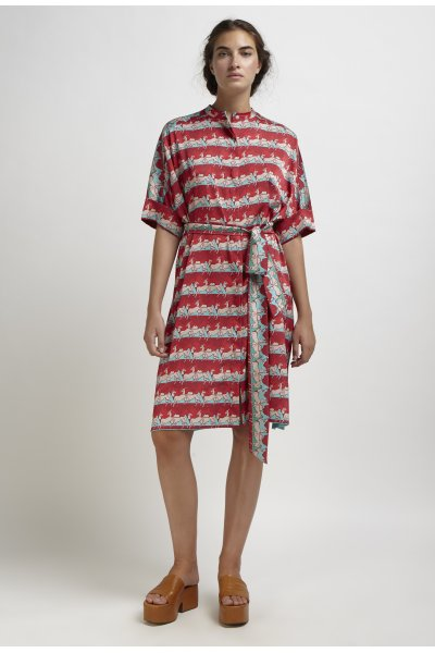 Erato printed shirtdress
